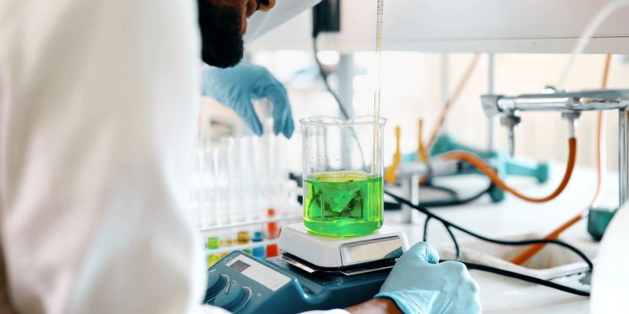 Triterpenoid Saponins in Gotu Kola – How it Works