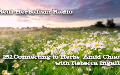 252.Connecting to Herbs Amid Chaos with Rebecca Ingalls
