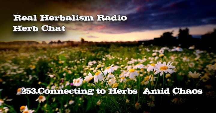 253.Connecting to Herbs Amid Chaos with Rebecca Ingalls-Herb Chat