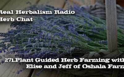 271.Plant-Guided Herb Farming with Elise and Jeff of Oshala Farm-Herb Chat