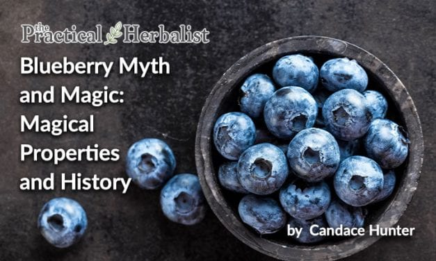 Blueberry Myth and Magic: Magical Properties and History