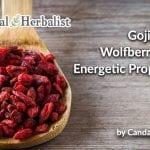 Goji Berry, Wolfberry, Lycii, Energetic Properties