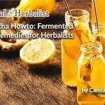 Kombucha Howto: Fermented Home Remedies for Herbalists