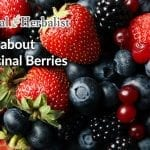 Berries as Herbal Medicine: Links, Videos, Berry Herbal Remedies
