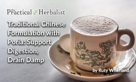 Traditional Chinese Formulation with Poria: Support Digestion, Drain Damp