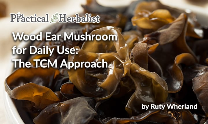 Wood Ear Mushroom for Daily Use: The TCM Approach to Yin Er