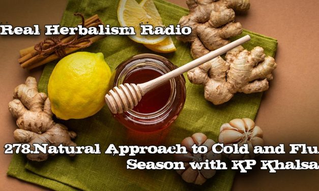 278.Natural Approach to Cold and Flu Season with KP Khalsa