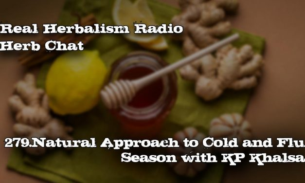 279.Natural Approach to Cold and Flu Season with KP Khalsa-Herb Chat
