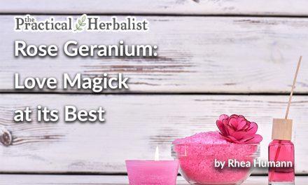 Rose Geranium Magic: Love Magick at its Best